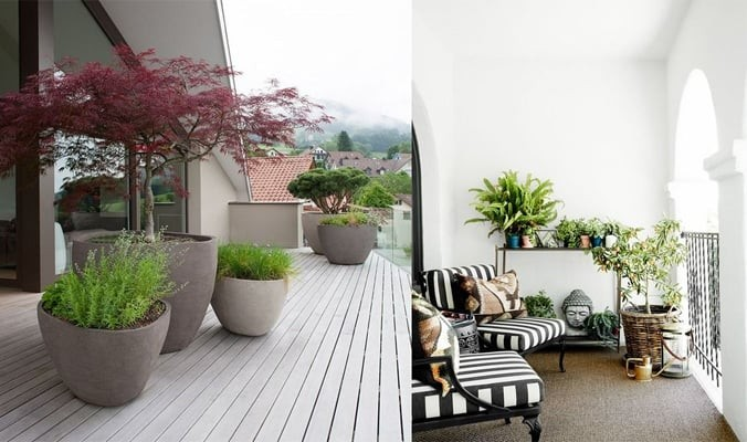 How to Choose the Best Pots for Your Balcony